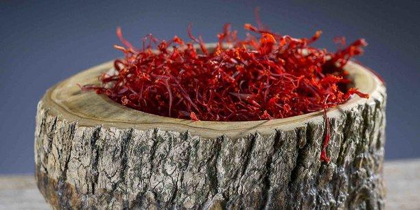 Des filaments rouges vendus à prix d'or