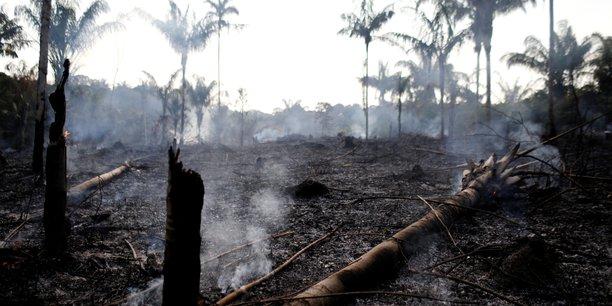 Feux de forêt en Amazonie: Bolsonaro accuse les ONG de les avoir allumés
