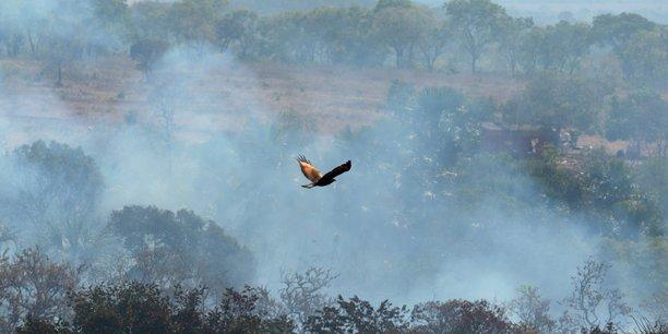 Amazonie: sept pays de la region signent un pacte de protection[reuters.com]