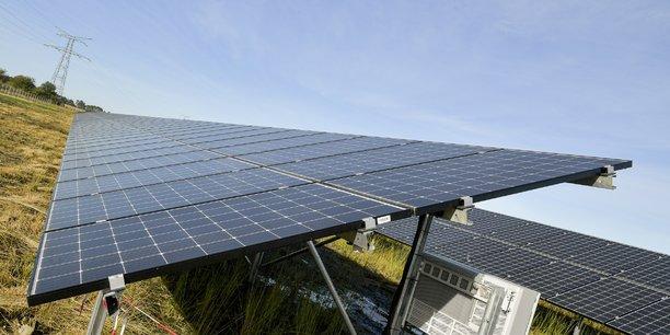 Les 22 hectares de la centrale solaire de Merle-Sud, en Gironde, seront partiellement entretenus par des moutons dans le cadre d'un accord de pâturage passé avec un éleveur local.