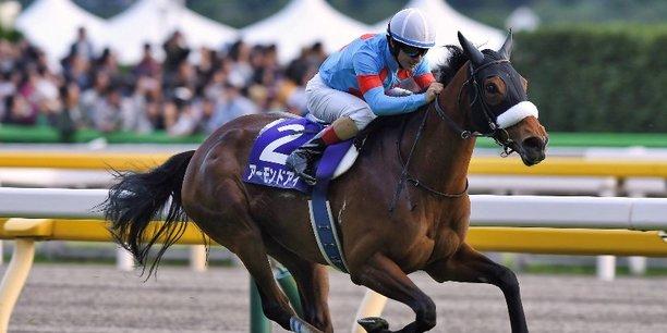 Christophe Lemaire monte Almond Eye (meilleur cheval japonais) à l'hippodrome de Tokyo, après sa victoire dans la Japan cup