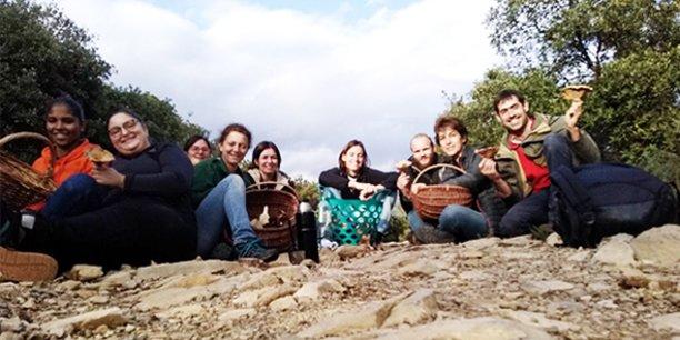 Les équipes de Myrcea travaillent sur les vertus des champignons pour lutter contre l'usage des pesticides.