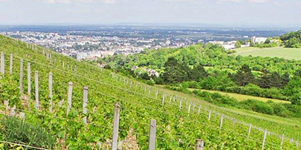 Le domaine de la Cras : 160 hectares de céréales et 10 hectares de vigne destinés à être transformés en zone agricole durable.
