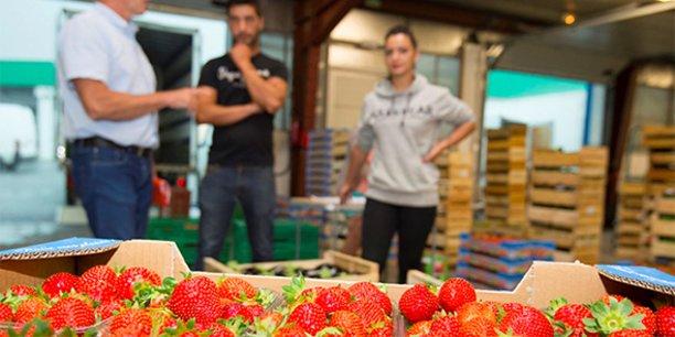 Le MIN de Montpellier s'attache à maintenir l'activité de distribution des productions agricoles du territoire.