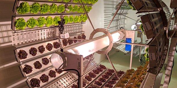 Dans ses fermes-verticales, Futura Gaïa fait pousser des cultures installées sur des roues.