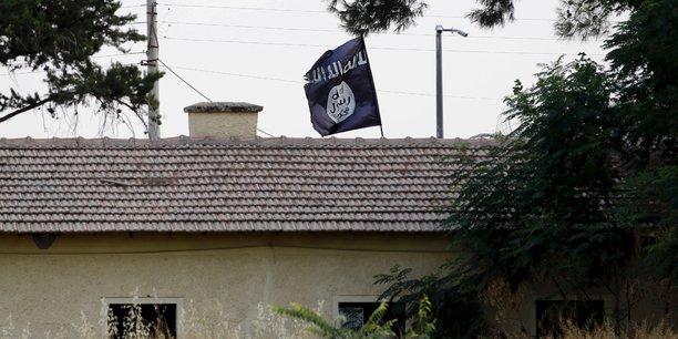 Pour l'etat islamique, la pandemie est un chatiment divin contre ses ennemis[reuters.com]