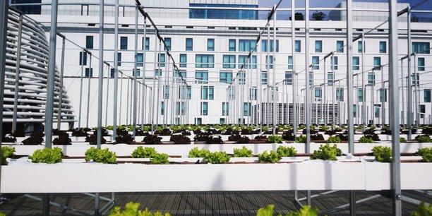 À Paris, 14.000 mètres carrés pour tester la ferme urbaine et propre du futur