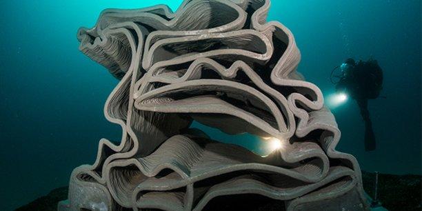 Seaboost installe des dispositifs de rochers artificiels, sortes de nurseries maritimes pour poissons juvéniles.