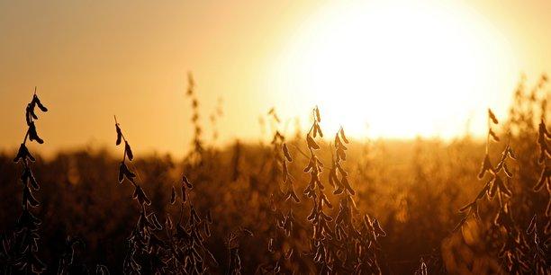 La france veut reduire sa dependance aux importations de soja[reuters.com]