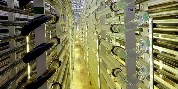 La bioraffinerie de microalgues de Microphyt, dans l'Hérault, produira à terme 100 tonnes d'ingrédients à haute valeur ajoutée.