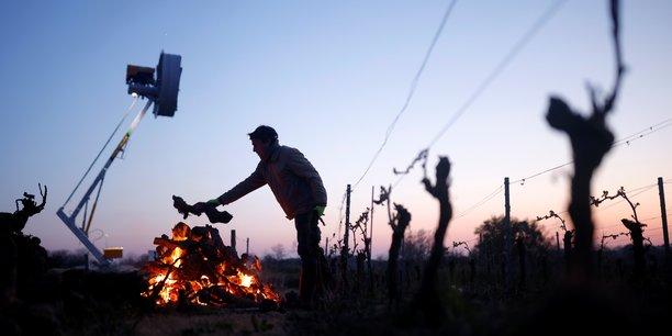 Gel: la fnsea salue le milliard d'euros d'aides aux agriculteurs[reuters.com]