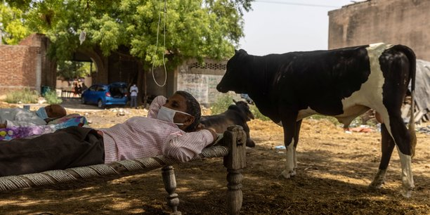 En inde, des villageois soignent leurs malades du covid-19 sous un arbre[reuters.com]
