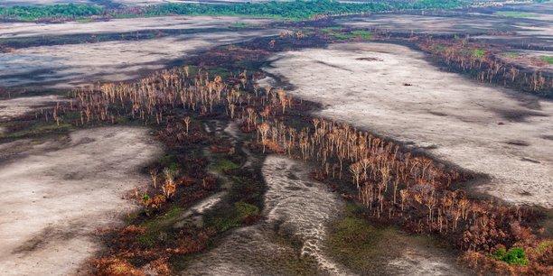 Les changements d'usage des terres arrivent en premier parmi les facteurs d'extinction des écosystèmes, affirme l'IPBES, qui est à la biodiversité ce que le GIEC est au climat.
