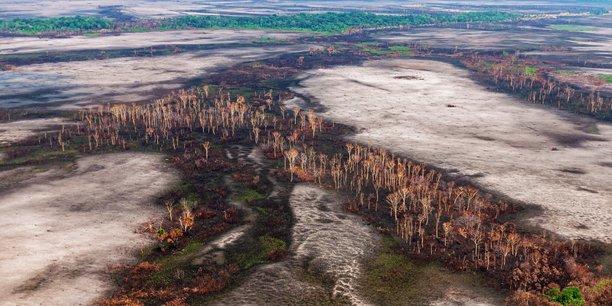 Photo d'illustration prise le 10 juillet 2020 dans le Mato Grosso (Brésil).