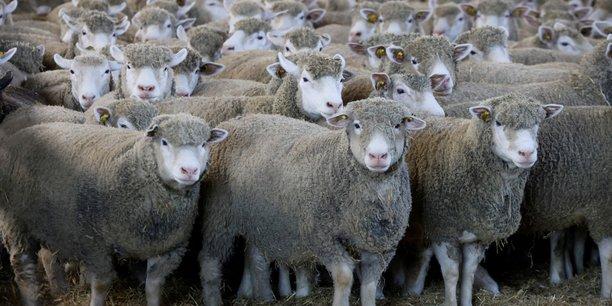 Ue: accord partiel dans les negociations sur l'agriculture[reuters.com]