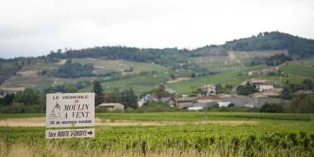 En top des activités du département vendues sur la plateforme Place de marchés de Rhône Tourisme, on retrouve le pique-nique dans les vignes, les fêtes du Beaujolais et le geocaching.