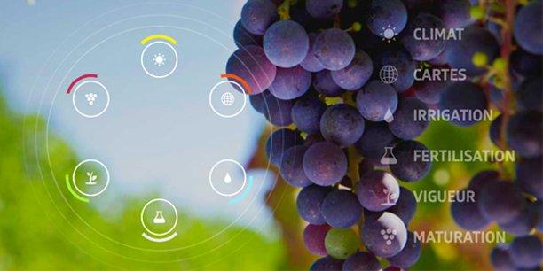 A Montpellier, Fruition Sciences est spécialisée dans le diagnostic et le conseil viticole : elle collecte et analyse des données, notamment sur les problématiques de stress hydrique et d'irrigation de la vigne.