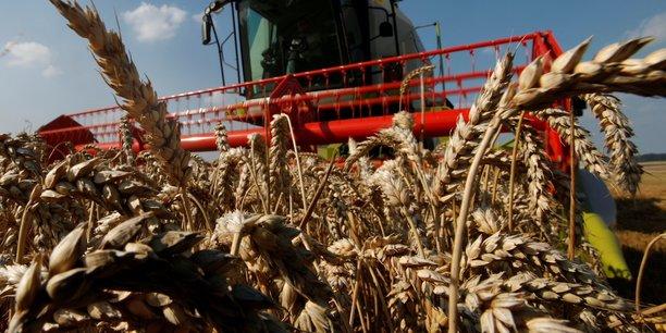 Le tassement des exportations agricoles pèse le secteur de l'agroalimentaire français.