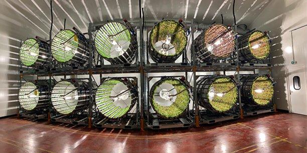 La startup gardoise Futura Gaïa développe un système de culture en géoponie rotative : de l'agriculture de précision en sol vivant et dans un environnement climatique contrôlé, opérée dans des fermes agricoles verticales.