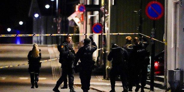 Norvege: un homme muni d'un arc et de fleches tue plusieurs personnes[reuters.com]