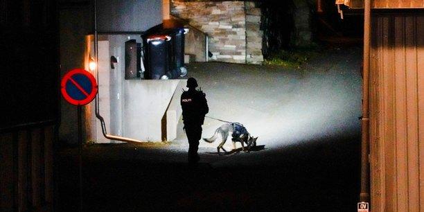 Le suspect de l'attaque en norvege est converti a l'islam, selon la police[reuters.com]