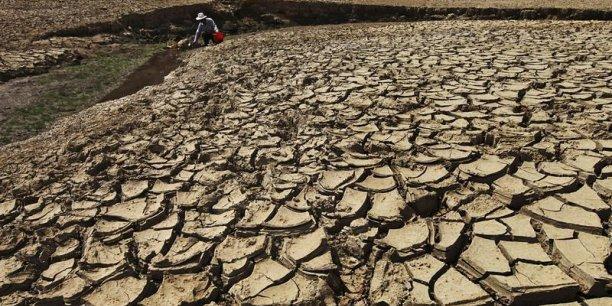 L'année 2014 a été la plus chaude depuis que les températures sont relevées, ce qui remonte au XIXe siècle, d'après l'Organisation météorologique mondiale.