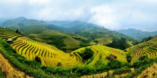 Sur les plateaux, les rizières en terrasses, forêts de bambous et cascades naturelles se révèlent, avant de replonger dans l'épaisse jungle... | © degist