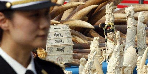 Le prix de l'ivoire brut en Chine a bondi de 550 euros le kilo en 2010 à 1.540 euros en 2014, selon des chercheurs.