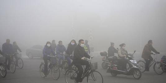 Le plaignant affirme avoir dû engager d'importantes dépenses pour se prémunir contre le smog (masques à gaz...)