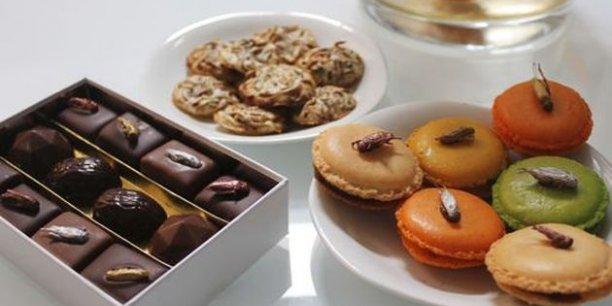 Assortiment de macarons à la poudre d'insectes, chocolats aux vers de farine... En Europe, l'autorisation de mise sur le marché d'aliments à base d'insectes est soumise à des contrôles toxicologiques très stricts. / DR