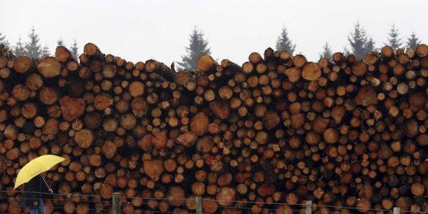Nous souhaitions montrer qu'il n'y a pas que le papier à prendre en compte en ce qui concerne l'impact de notre consommation sur les forêts, principale cause de la déforestation mondiale, expliquent les responsables de l'ONG.
