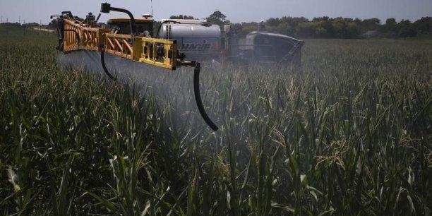 Ce sont principalement les fongicides et les herbicides qui ont été davantage utilisés ces dernières années.