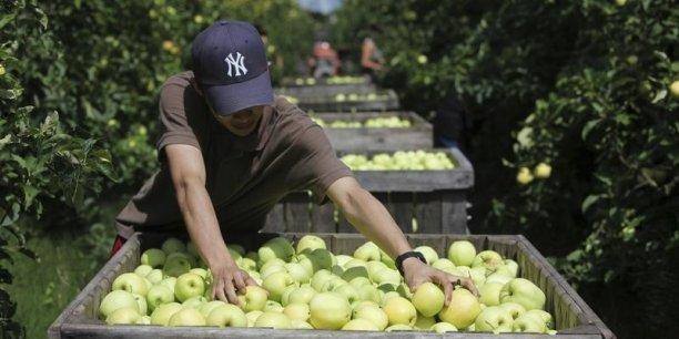 La Pologne cherche un nouveau débouché pour ses pommes: les Etats-Unis.