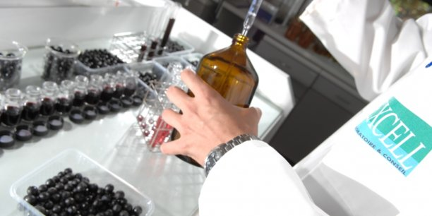 Des protéines utilisées lors de la vinification présentent un risque allergène.