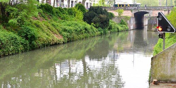 6 millions d'euros seront investis pour tenter de sauver les platanes des berges du Canal du Midi  © Frédéric Marie