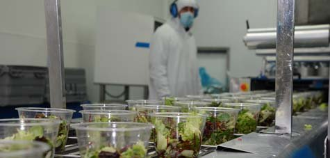 Les entreprises de l'agroalimentaire ont du mal à attirer des candidats à l'emploi et veulent communiquer sur l'amélioration des conditions de travail et la modernisation de leur processus de production.
