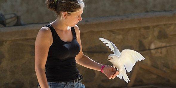 Le zoo Val d'Hérault est inauguré le 7 novembre 2014