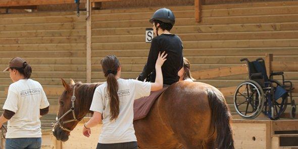 A l'institut Equiphoria, le cheval est le vecteur principal de la thérapie.