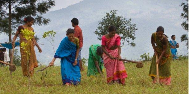 Au total, 2 millions de personnes et 200 000 exploitations familiales devraient bénéficier des investissements du fonds Livelihoods pour l'Agriculture familiale