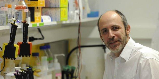 Créé en 2010 à Nantes par Olivier Kitten, Affilogic  s'est vu confiée par le CNRS et l'Institut Pasteur, une licence exclusive d'exploitation mondiale des Nanofitines® pour 20 ans.