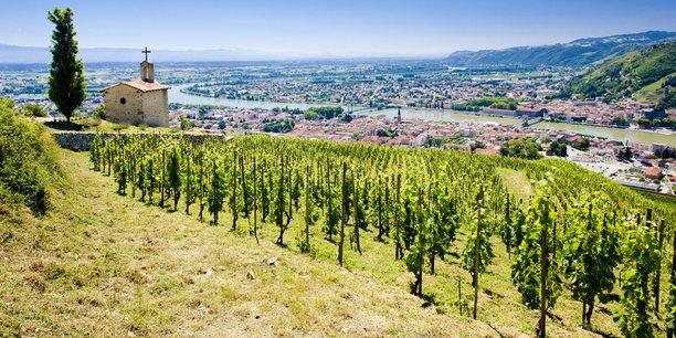 Coris Innovation n'avait pas prévu les fortes gelées du printemps qui ont dévasté les vignobles français, mais la PME annécienne avait, dans ses cartons, un outil qui pourrait outiller à l'avenir les viticulteurs.