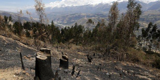 Les recherches effectuées dans le cadre du programme Carbon Monitoring System étaient en grande partie axées sur l'étude de la dynamique des stocks de carbone forestier et des effets de la déforestation.