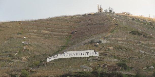 Des vignes du domaine Chapoutier, à Tain-l'Hermitage (Drôme).