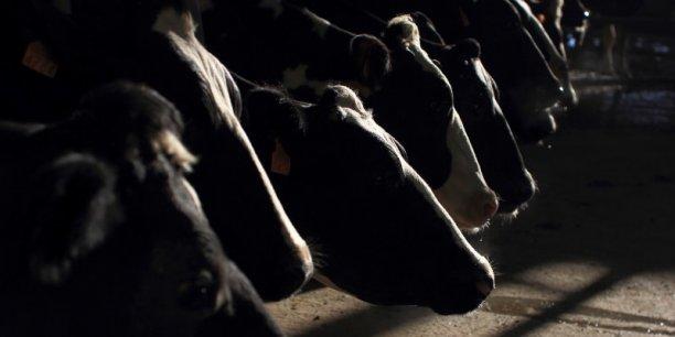 Le prix moyen du lait à la vente est passé sous la barre des 300 euros les mille litres, alors qu'il coûte entre 350 et 400 euros à produire. s