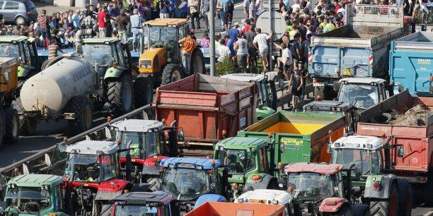 Du côté des agriculteurs, il peut être intéressant que des organisations de producteurs se mettent en place (...) afin de constituer un contrepoids pour les négociations sur les prix, estime Thierry Pouch.