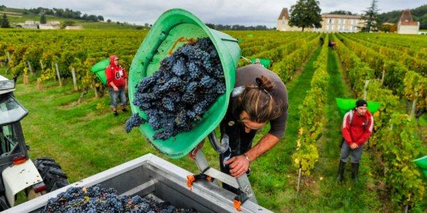Mis en place au plus fort de la crise économique de la viticulture bordelaise, le plan Bordeaux Demain semble payer