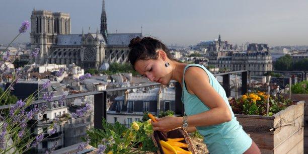 Le maraîchage, qu'il s'implante sur les toits-terrasses des immeubles ou à même le sol dans des jardins, comme la plantation d'arbres fruitiers dans les rues, contribue à un meilleur équilibre alimentaire