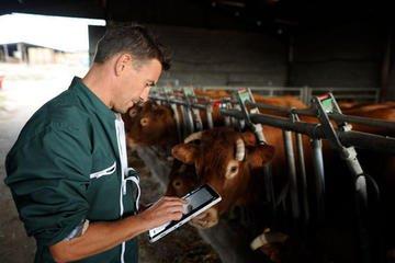En Bretagne, les entreprises des TIC numérisent le monde agricole