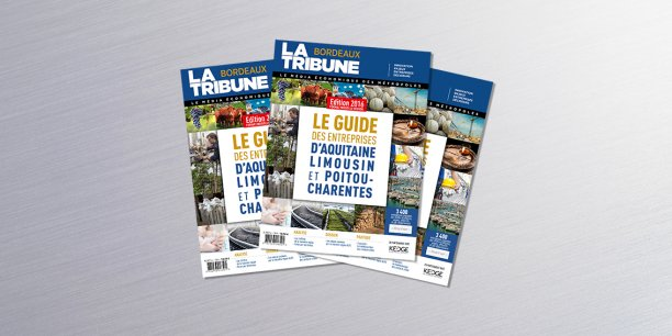 Le Guide des entreprises adopte pour la première fois le format nouvelle région.