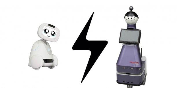 Résolument grand public, Buddy est aussi orienté vers le marché de l'assistance aux personnes âgées. Un marché qui est dans le viseur, avec celui de la santé, du robot basque Kompaï2 (Robosoft).